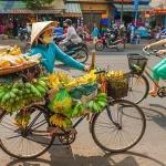 Capital-Hanoi-shore-excursions