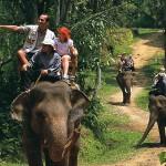 Elephant ride in Bali Elephant Safari Park