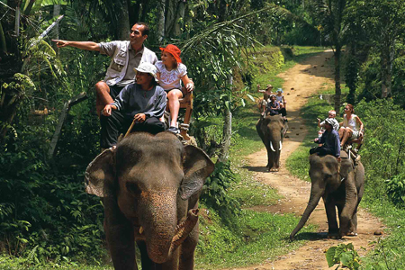 Elephant ride in Bali Elephant Safari Park