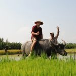 Experience-the-Real-Vietnam-Wet-Rice-Hoi-An-Da-Nang-shore-excursions