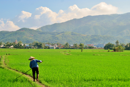 Nha Trang Rural Life and Hot Spring