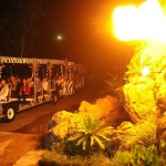 Night Safari Park Show Singapore