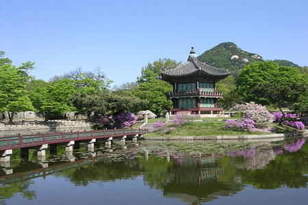 Seoul and Wolmido Island Tour