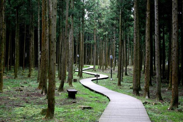 Jeju Island Eco Tour