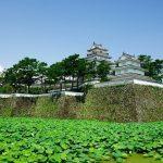 Shimabara Castle garden