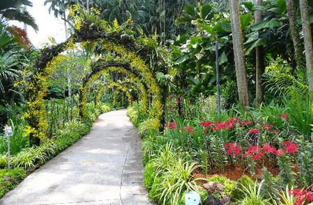 National Orchid Garden, Botanic Gardens, Singapore