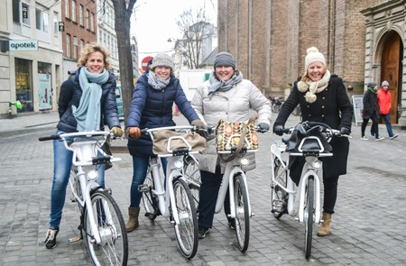 Copenhagen Shore Excursion Private City Bike Tour