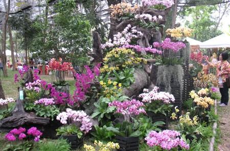 The Rose Garden, Bangkok