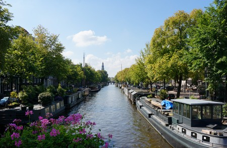 Amsterdam Shore Excursion Amsterdam City Sightseeing Tour