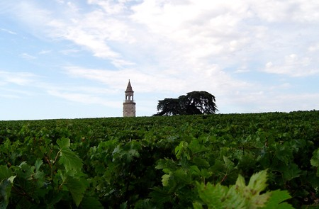 Bordeaux Shore Excursion Medoc Wine Taste Full-Day Private Trip