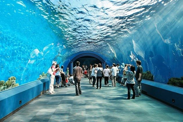 Krabi Aquarium