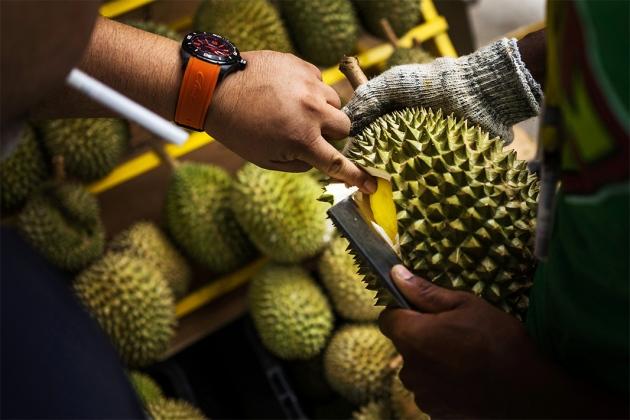 Taman Warisan Pertanian durians