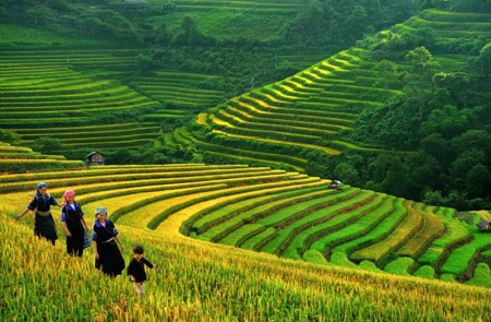 Vietnam weather in spring