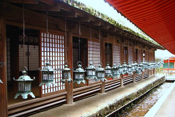 Stone lanterns, Kasuga Shrine
