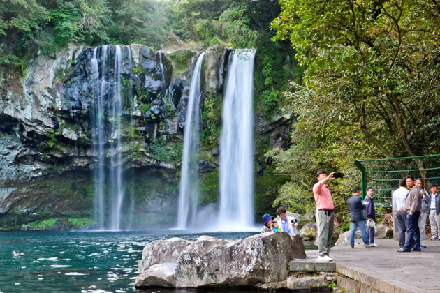 Cheonjiyeon Falls is home to many precious animals and plants