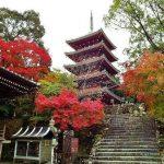 Chikurin-ji-Temple-Kochi