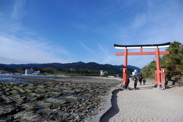 Nichinan Sightseeing Tour