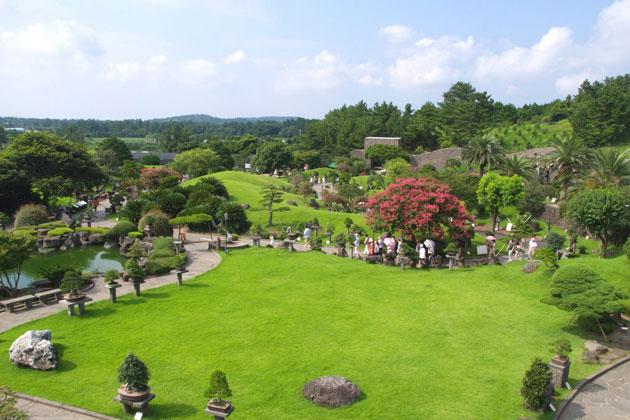 The Spirited Garden