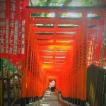 Uto-Shrine-Miyazaki-shore-excursions