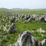 Akiyoshidai limestone formation