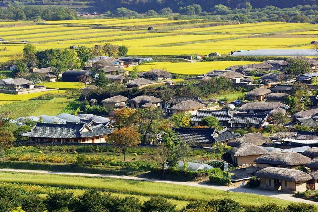 Andong City