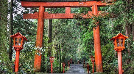 Hakone Sightseeing Tour from Shimizu Port