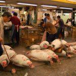 Toyosu Fishery Market