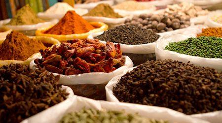 Goa Market Tour & Organic Farm