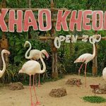 Khao-Kheow-Open-Safari-Park
