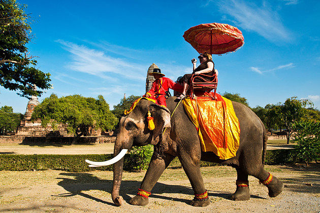Koh Samui Eco Tour incl. Elephant Riding