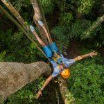 Tarzan Adventure Zipline