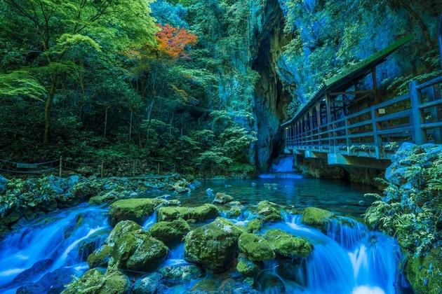 Akiyoshido Limestone Cave – Japan's Longest Cave