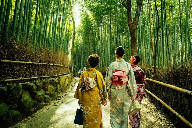 Arashiyama Bamboo Forest - Kyoto shore excursions