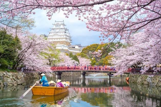 Himeji Castle overview