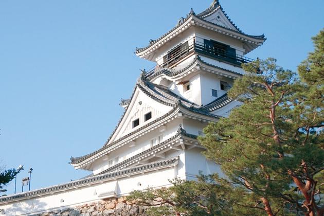 Kochi Castle attractions for shore excursions