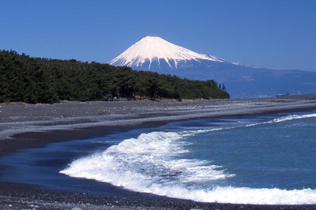Mt. Fuji & Art Museum