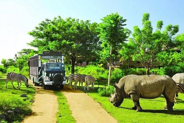 Safari-World-bangkok open zoo