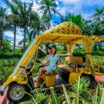 Pineapple-Park-Okinawa-shore-excursions