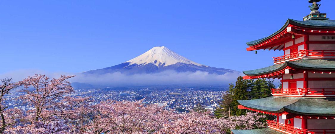 Shimizu tour to Mt. Fuji