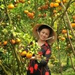 orchards-in-Mekong-Delta