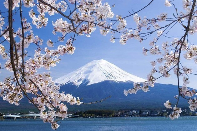 Best Time to Enjoy Japan Shore Excursions by Regions