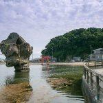 Esashi-Hakodate-shore-excursions