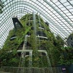 Cloud-Forest-in-Singapore-Garden-by-the-bay