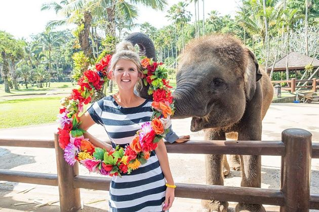 Elephant Safari Park in Bali shore excursions