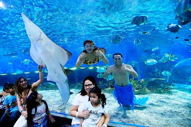 Manila Ocean Park - Philippines shore excursions