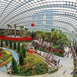 Mediterranean-Flower-Dome-in-Singapore-shore-excursions