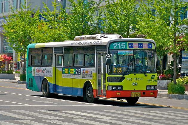 Public Transportation in Korea