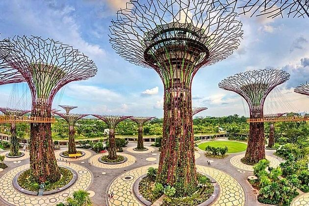 Singapore's Gardens by the Bay with Lunch