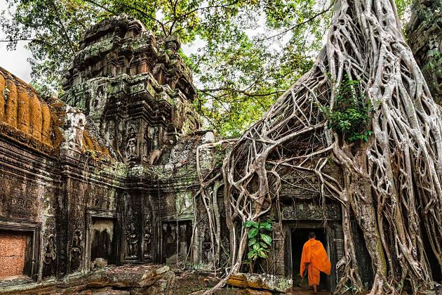 Ta Prohm - Cambodia shore excursions