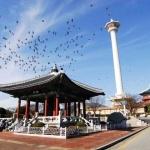 Yongdusan Park - Busan shore excursions